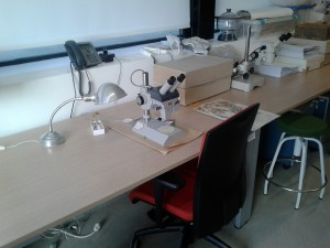 Lab botánica